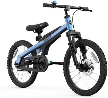 1. Segway Ninebot Kids Bike for Boys and Girls